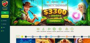 Скриншот Netgame Casino